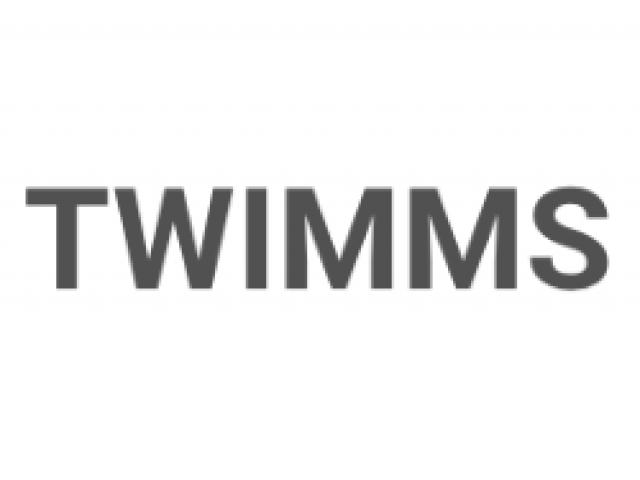 TWIMMS wearable art